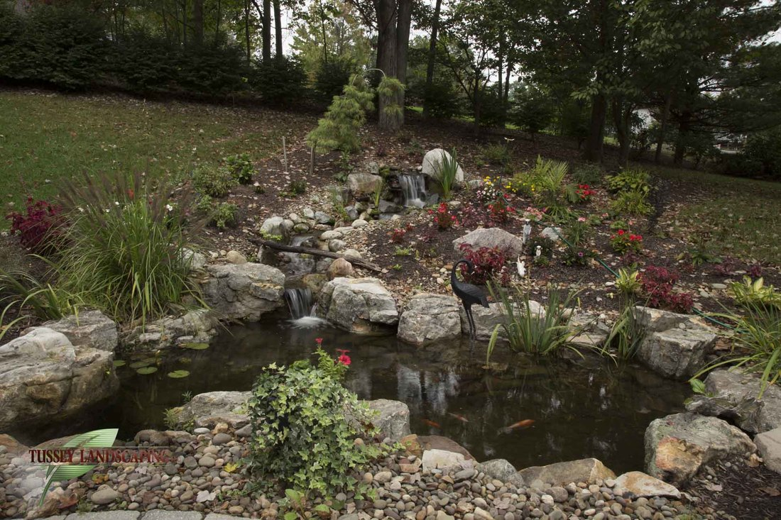 fish koi pond projects johnstown huntingdon state college altoona